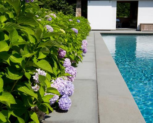 local landscaping company in-ground pool building